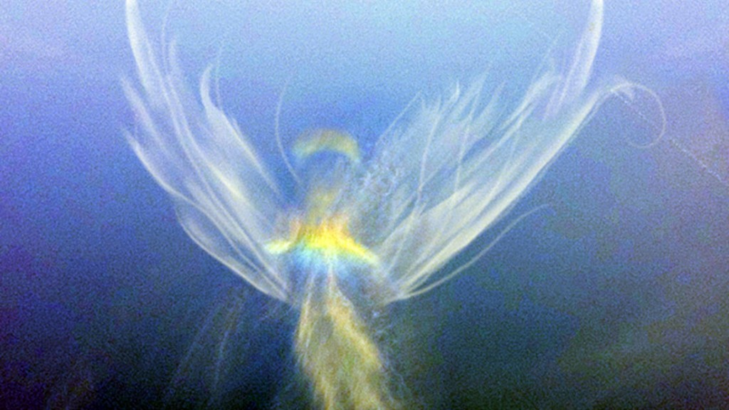 Potopul sau cum suna pasii de ingeri in cer